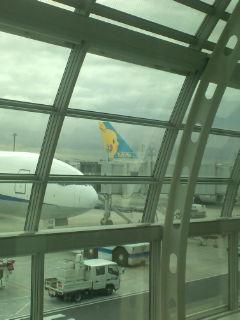 羽田空港着いた